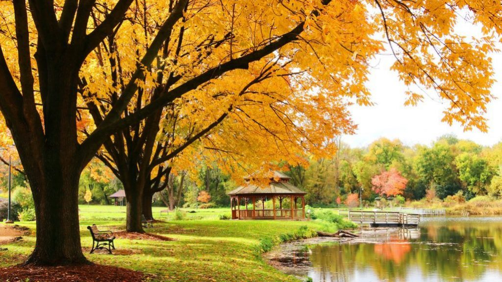 Park in Middleton, WI